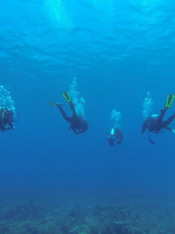 Mergulhando em águas profundas